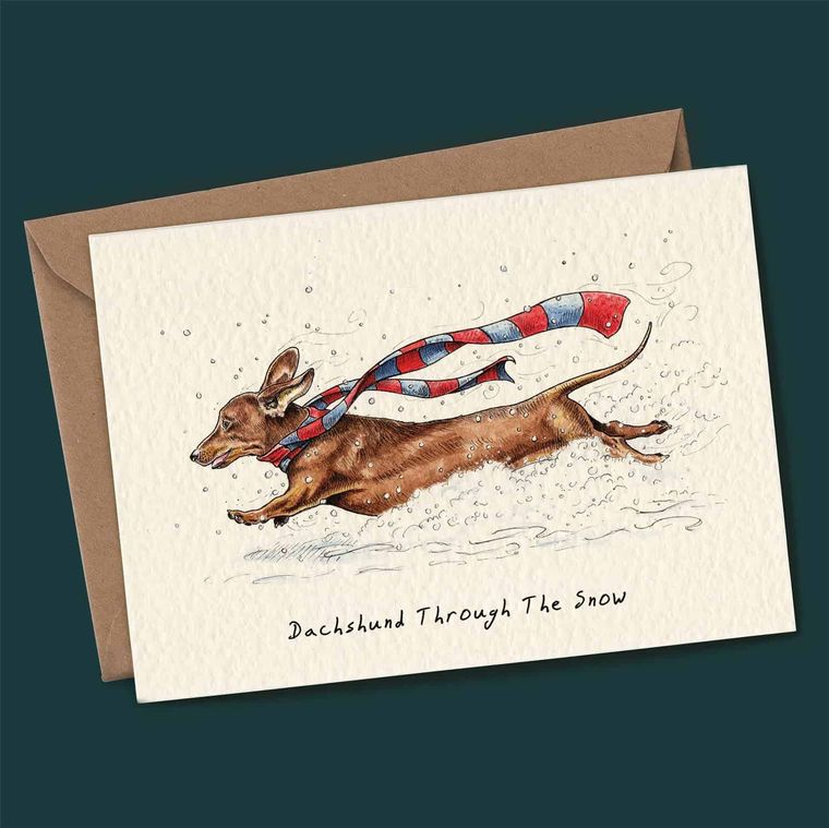 Set Of 4 Humerous Animal Themed Christmas Cards