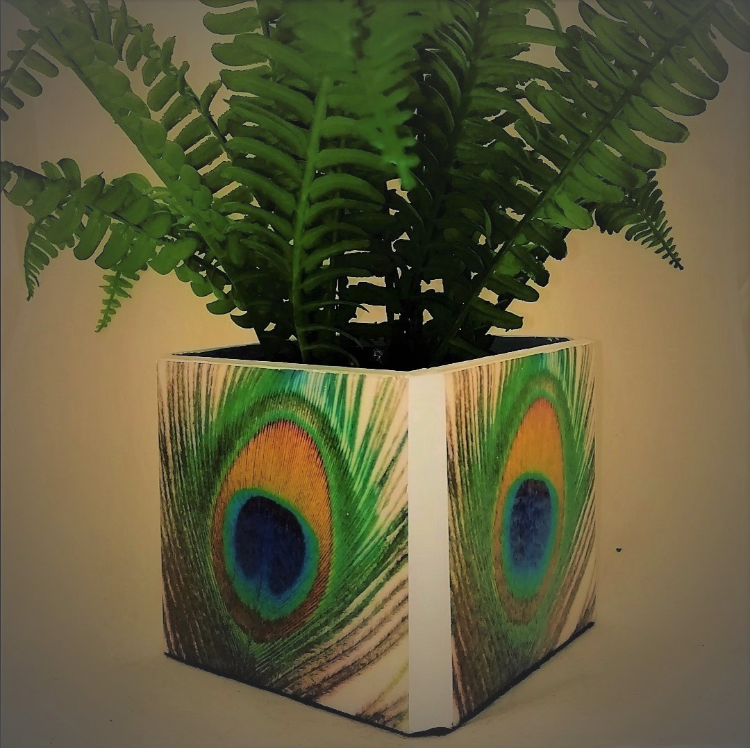 Peacock Plant Pot Holder