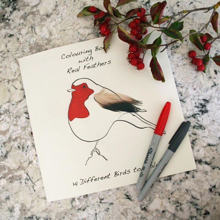 Bird Colouring Book With Real Feathers