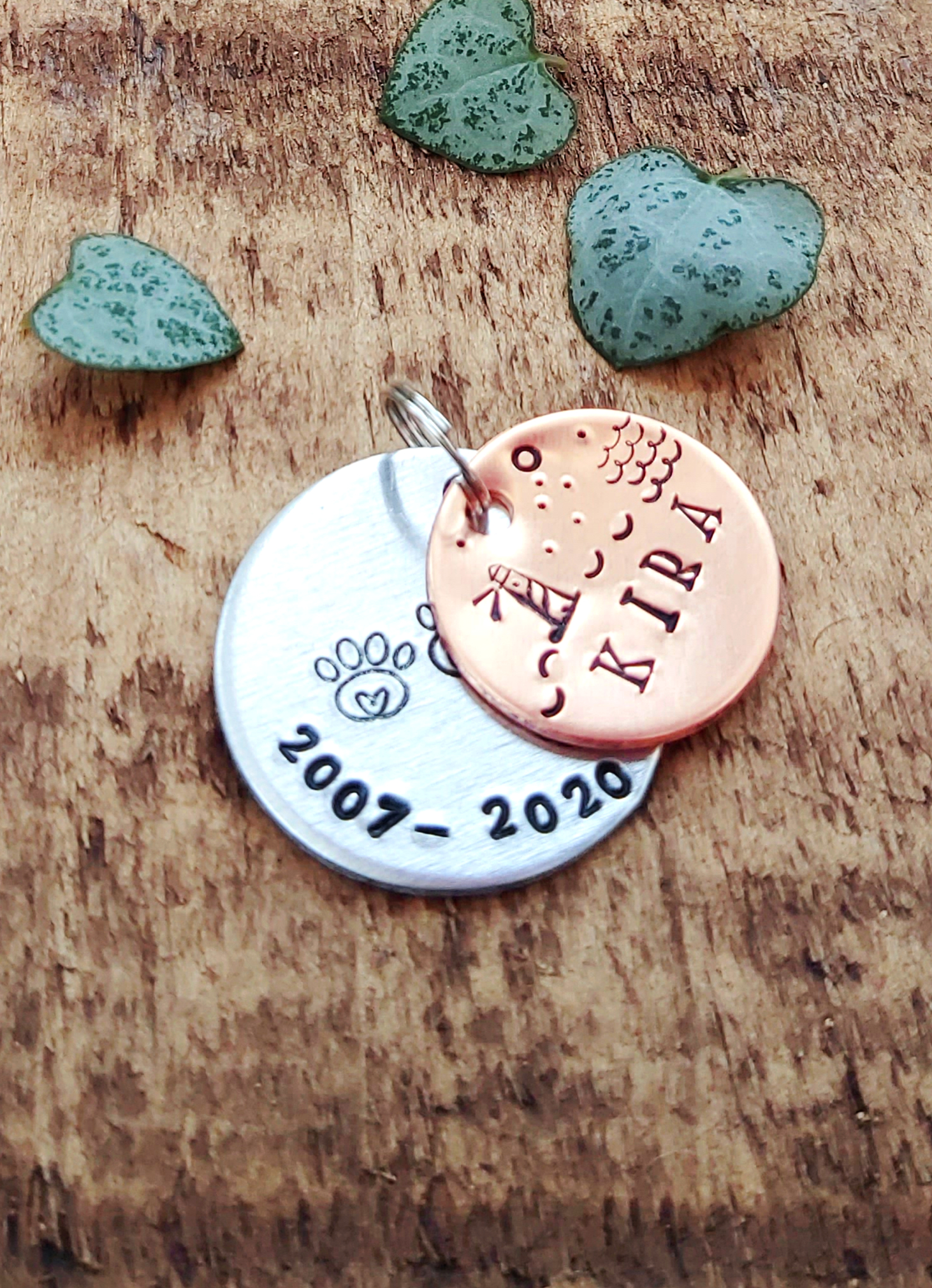 Personalised Pet ID Name Discs